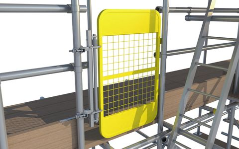 Ladder Access Gate (Spring Return)